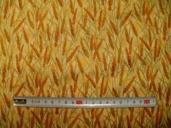 vzor   3209-242 Zlatotisk klasy 242 -