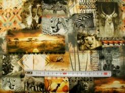 vzor 37001-211 Safari 02 - Šířka 160 cm