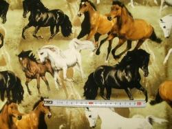 Látky - vzor 37001-121 Koně 02 - Šířka 160  cm