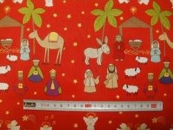vzor 7190-009 Lewis & Irene Christmas Star 009 -