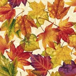 Látky Patchwork - Autumn Album 096