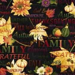 Látky Patchwork - Autumn Album 105