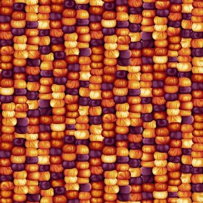 Látky Patchwork - Autumn Album 106