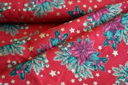 130286-5019 Vánoční hvězda na červené -