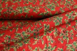 031894-0001 Vánoční větvičky na červené -