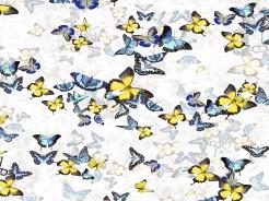19-173 Motýli na bílé -