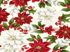 3291-102 Vánoční hvězdy na bílém podkladu -