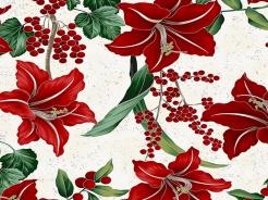 3291-113 Vánoční květiny a bílém podkladu -