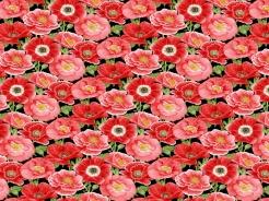 4706-121 Poppy Meadows -