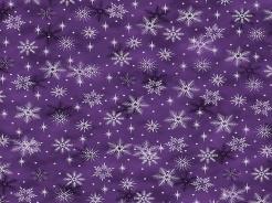 4597-502 Magic Christmas 502 -