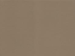 9906 Kaiman 06 - barva světlehnědá