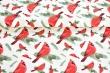 Látky Patchwork - Ptáčci na smetanové